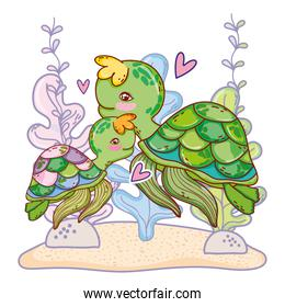 turtle family animal with seaweed plants