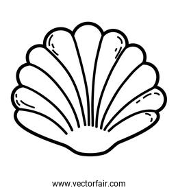 Shell cartoon isolated
