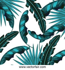 Tropical flowers background