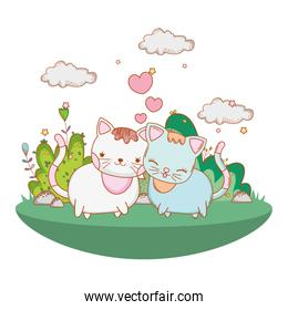 kitty cats in love outdoors cartoon