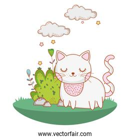 kitty cat outdoors cartoon