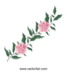 Beautiful pink flower with leaves
