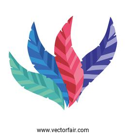 party feathers decorative isolated vector illustration
