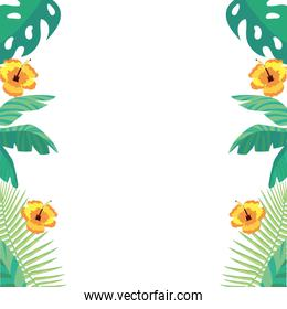 tropical leaves and flowers background vector illustration