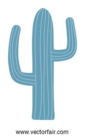 Isolated cactus design vector illustration