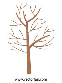 Isolated abstract and season tree design