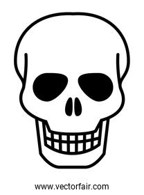 Isolated skull head design vector illustration