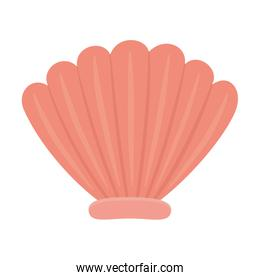 Isolated sea shell design vector illustration