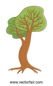 Isolated abstract and season tree design vector illustration