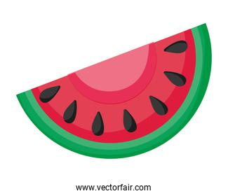 Isolated watermelon fruit design vector illustration