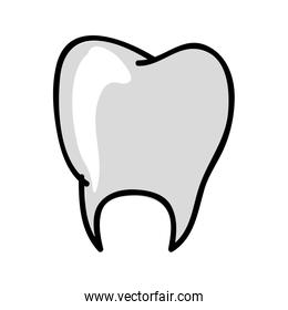 tooth medical icon image