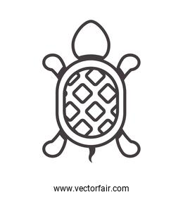 silhouette with turtle shape animal