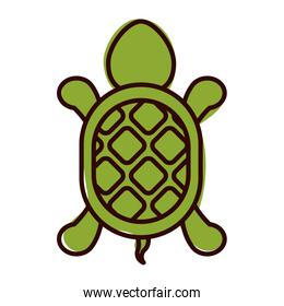 silhouette with turtle shape animal color