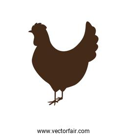 silhouette brown color with chicken
