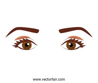 Woman's look with eyes cafes expressive