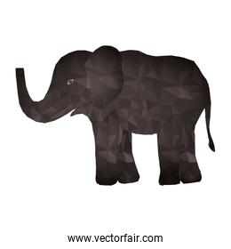 elephant abstract design
