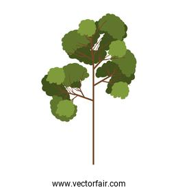 silhouette tree with leafy branches model three