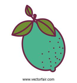 silhouette color of fruit lemon with stem and leafs