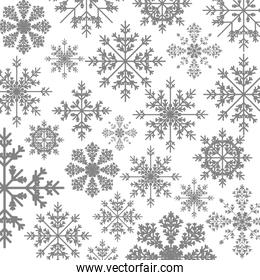 pattern monochrome with ice crystals