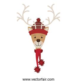 reindeer head with christmas woolen hat and scarf