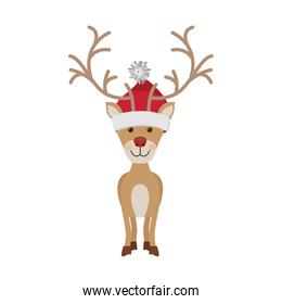 reindeer front pose with christmas woolen hat