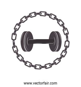 border with chain inside a disc weights