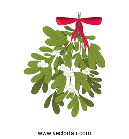 Christmas mistletoe with red ribbon
