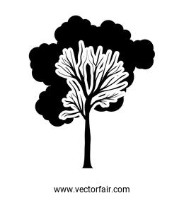 black and white tree trunk with foliage shape cloud