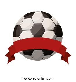 silhouette color with soccer ball and ribbon