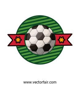 silhouette color emblem with soccer ball and ribbon in middle
