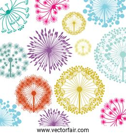 pattern with silhouette colorful dandelion