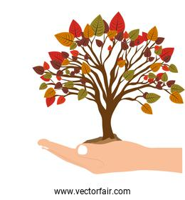 hand holding a tree with colorful leafy branches