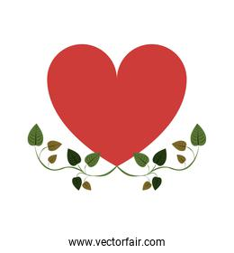 heart with border creepers of leaves