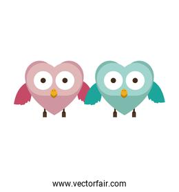 couple of owls holding wings