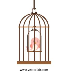 cage with bird in swing