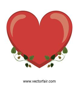 heart with border ivy of leaves isolated icon