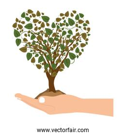 han holding heart shape tree with leafy branches