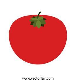 silhouette colorful with tomato vegetable