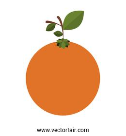 silhouette colorful of orange fruit with stem and leafs