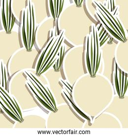 silhouette colorful pattern with onions vegetable
