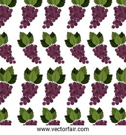colorful pattern of bunch grapes with stem and leafs