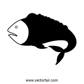 monochrome silhouette with sea fish with tail down