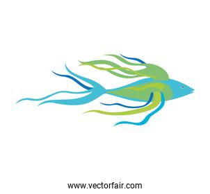colorful silhouette with sea fish long fins
