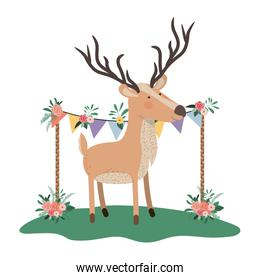 cute and adorable deer with floral frame
