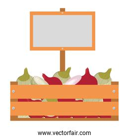 wooden box with onions isolated icon