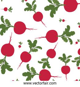 beautiful pattern of beets isolated icon