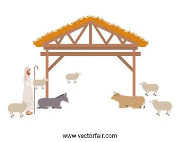 Shepherd with sheeps in stable