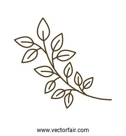 tree branch with leaves isolated icon
