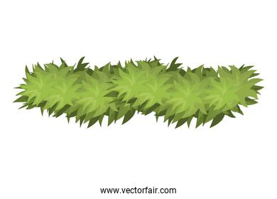green garland isolated icon