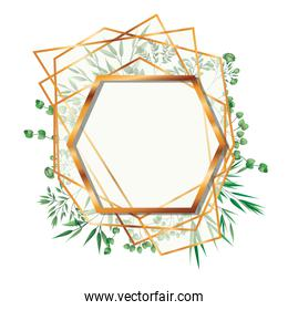 golden frame hexagon with foliage isolated icon